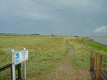 RSPB nature reserve of Havergate Island - geograph.org.uk - 224824.jpg