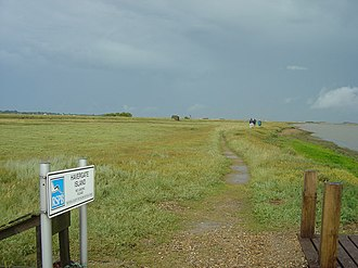 Havergate Island - Salt marsh on Havergate Island, looking north-east from the landing jetty