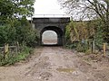 Rail bridge on the track - geograph.org.uk - 1564524.jpg