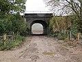Rail bridge on the track - geograph.org.uk - 1564524.jpg
