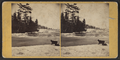 Rapids above Bath Island, by John B. Heywood.png