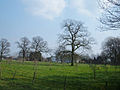 Ravenscroft Hall Farm - geograph.org.uk - 382879.jpg