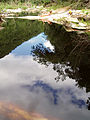 Reflection Knysna 2.jpg