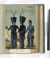 Regimentos de Linea - Tambores Mayores (de Gala; de Diario). 1851 (NYPL b14896507-91294).tiff