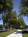 Renton, WA - Burnett Linear Park 01.jpg