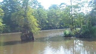 Dorcheat Bayou river in the United States of America