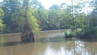 Dorcheat Bayou - Once navigable from the Red River to Minden, Dorcheat Bayou, shown here at Dixie Inn, is a popular fishing area with scenic beauty in many places.