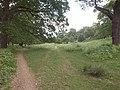 Richmond Park - geograph.org.uk - 1921739.jpg