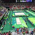 Rio 2016 Olympic artistic gymnastics qualification men (29106505176).jpg