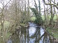 River Arrow - downstream - geograph.org.uk - 486516.jpg