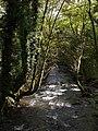 River Inny near Trefrize Mill - geograph.org.uk - 589491.jpg