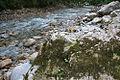 River Mali Rzav and Visocka Banja Spa in Serbia - 4283.NEF 17.jpg