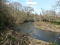 River Teign near Chudleigh Knighton - geograph.org.uk - 729723.jpg