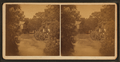 River view of San Antonio, Texas, from Robert N. Dennis collection of stereoscopic views.png