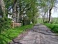 Road at Drumaderry - geograph.org.uk - 791958.jpg