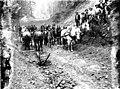 Road construction crew near Montesano, 1907 (WASTATE 1269).jpeg