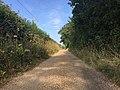 Road to Lound Heath, Suffolk.jpg