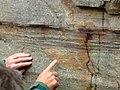 Rock of Skiddaw Group Scawgill.jpg