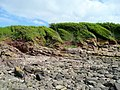 Rocky beach and low cliffs, Portishead - geograph.org.uk - 1400007.jpg