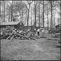 Rohwer Relocation Center, McGehee, Arkansas. A typical wood cutting scene on a street in the north . . . - NARA - 538930.jpg