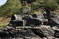 Roscanvel - Mur de l'Atlantique - 008.jpg