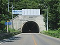 Route13 Otaki Daini Tunnel 1.jpg