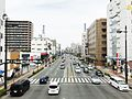 Route 11 Yoshinogawa Bypass, Nakazu-cho Tokushima.jpg