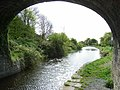 Royal Canal at The Downs, Co. Westmeath - geograph.org.uk - 1284811.jpg