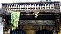 Ruin balcony succulents (Funchal) (24245571468).jpg