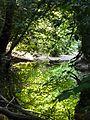 Ruisseau du Pirudel (La Grigonnais).jpg
