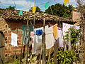Rural House and Laundry in Santo Amaro - Near Salvador - Bahia - Brazil.jpg