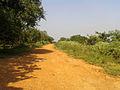 Rural road to Nunaparti Balaji Temple.jpg