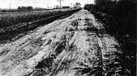 Sacramento River levee road before.jpg