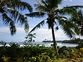 Samoa scenic coastline with palm trees foreground 1.JPG