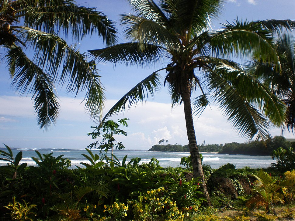 Samoa scenic coastline with palm trees foreground 1