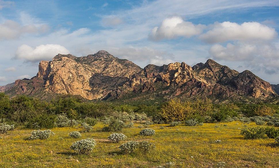 San Carlos Sonora landscape