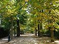 San Ildefonso - Reales Jardines 05.JPG