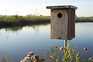 San Joaquin Wildlife Sanctuary birdhouse.jpg