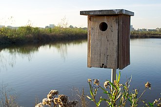San Joaquin Wildlife Sanctuary - A birdhouse at the SJWS