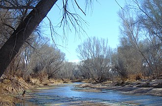 San Pedro Riparian National Conservation Area - Image: San Pedro River Little Boquillas Ranch Arizona 2015