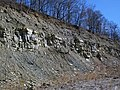 "Sandstone-dominated overburden over ""Middle Blue"" shales (Vinton Member, Logan Formation, Lower Mississippian; Hanover Pit, Licking County, Ohio, USA) 9 (46908330744).jpg"