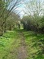 Sandy Lane - geograph.org.uk - 168997.jpg