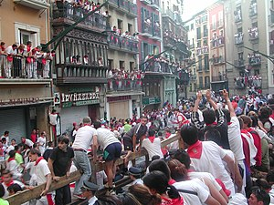 Running of the Bulls - The bull run in Pamplona