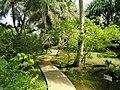 Sankyo Garden - DSC01232.JPG