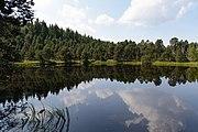 Schönwald im Schwarzwald Blindensee 01.jpg