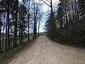 Scheltenpass (305245406).jpg