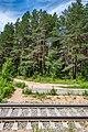 Sciklieva reserve (Belarus, June 2020) 13.jpg