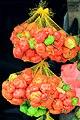 Scotch bonnet peppers, Tabatinga (9290132230).jpg