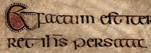 """Insular script - St Chad Gospels: """"Et factum est iterum cum sabbatis ambularet Iesus per sata"""" (Mark 2:23, p. 151)"""