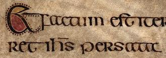Lichfield Gospels - Script, Mark 2:23, p. 151